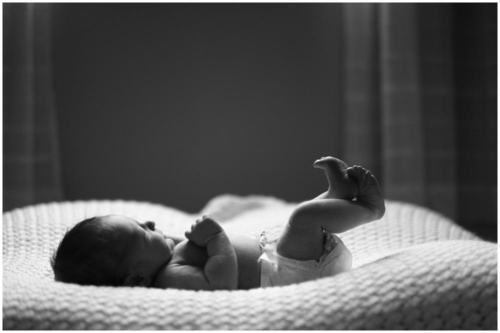 Baby Jackson-13